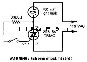 Simple Triac Circuit Circuit
