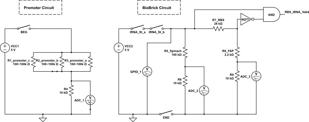 Hum Circuit - schematic